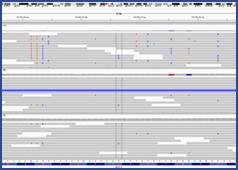 peut réaliser toute l'analyse de vos données de NGS, appuyée par des contrôles qualité.