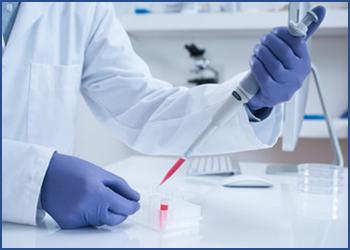 A partir de modèles in vitro adaptés à vos projets, AnyGenes peut réaliser toutes vos expériences in vitro pour vous.