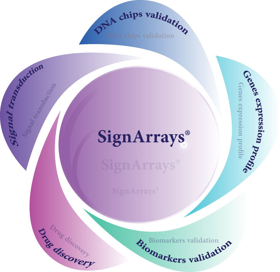 qPCR Array and PCR Array SignArrays Signaling Pathways can be used for many applications : from gene expression profiling to biomarker identification and validation.
