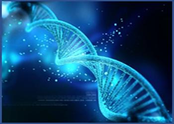 Services complets d'analyse de données haut débit d'expression génique basés sur la technologie de qPCR array pour explorer biomarqueurs et voies de signalisation.