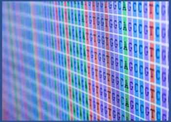Notre équipe bioinformatique peut réaliser vos analyses de données haut débit de qPCR arrays, puces ADN ou NGS (Next-Generation Sequencing) pour vous.