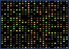 L'équipe scientifique d'AnyGenes prend en charge votre analyse de données haut débit de puces à ADN : des données brutes aux graphiques et comptes-rendus.