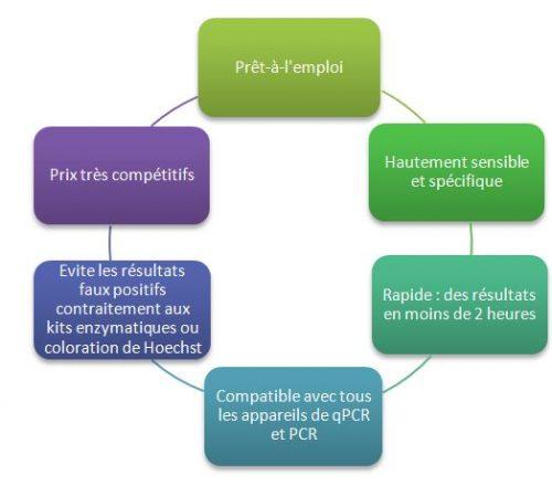 : Compatibles avec tous les appareils qPCR / PCR, les réactifs MycoDiag, prêts à l'emploi, hautement sensibles et spécifiques, permettent la détection de contamination par Mycoplasmes de vos cultures cellulaires, en moins de 2 heures.