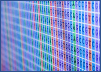 Biomarker Services Let our bioinformatic team perform all your qPCR arrays, DNA microarrays or Next-Generation Sequencing data analysis for you.
